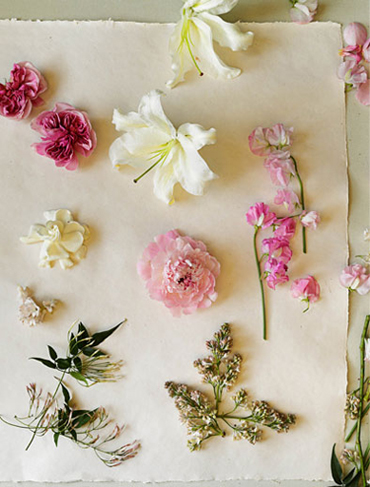 Flowers by Scent