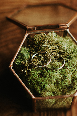 The two rings are set in a mossy ring box.