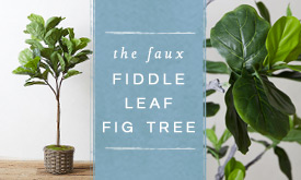 the Faux Fiddle Leaf Fig
