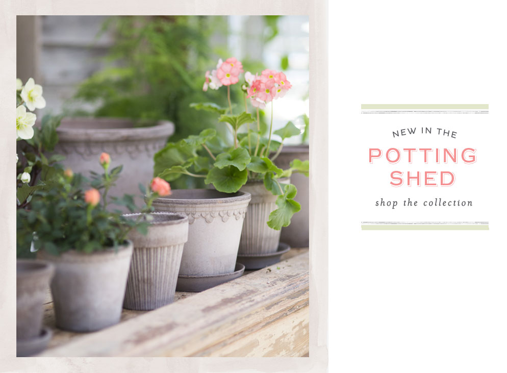 NEW in the Potting Shed | shop the collection