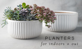 Planters for Indoors + Out