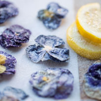 Make It: Sugared Edible Flowers