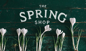 The Spring Shop