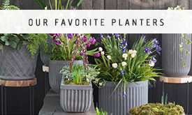 Our Favorite Planters back in stock