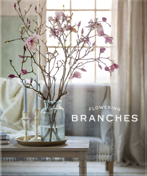 Gorgeous flowering branches