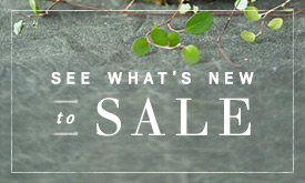 See What's New on SALE