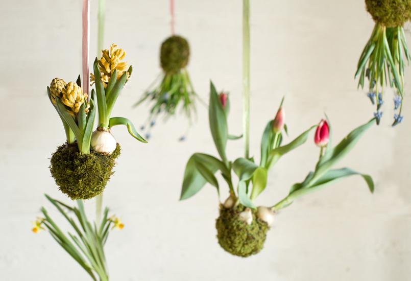Spring String Garden by Terrain
