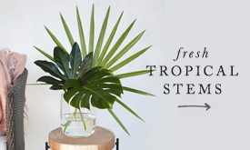 Fresh Tropical Stems