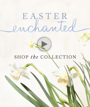 shop the easter collection