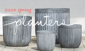 Shop the Galvanized Barrel Planter