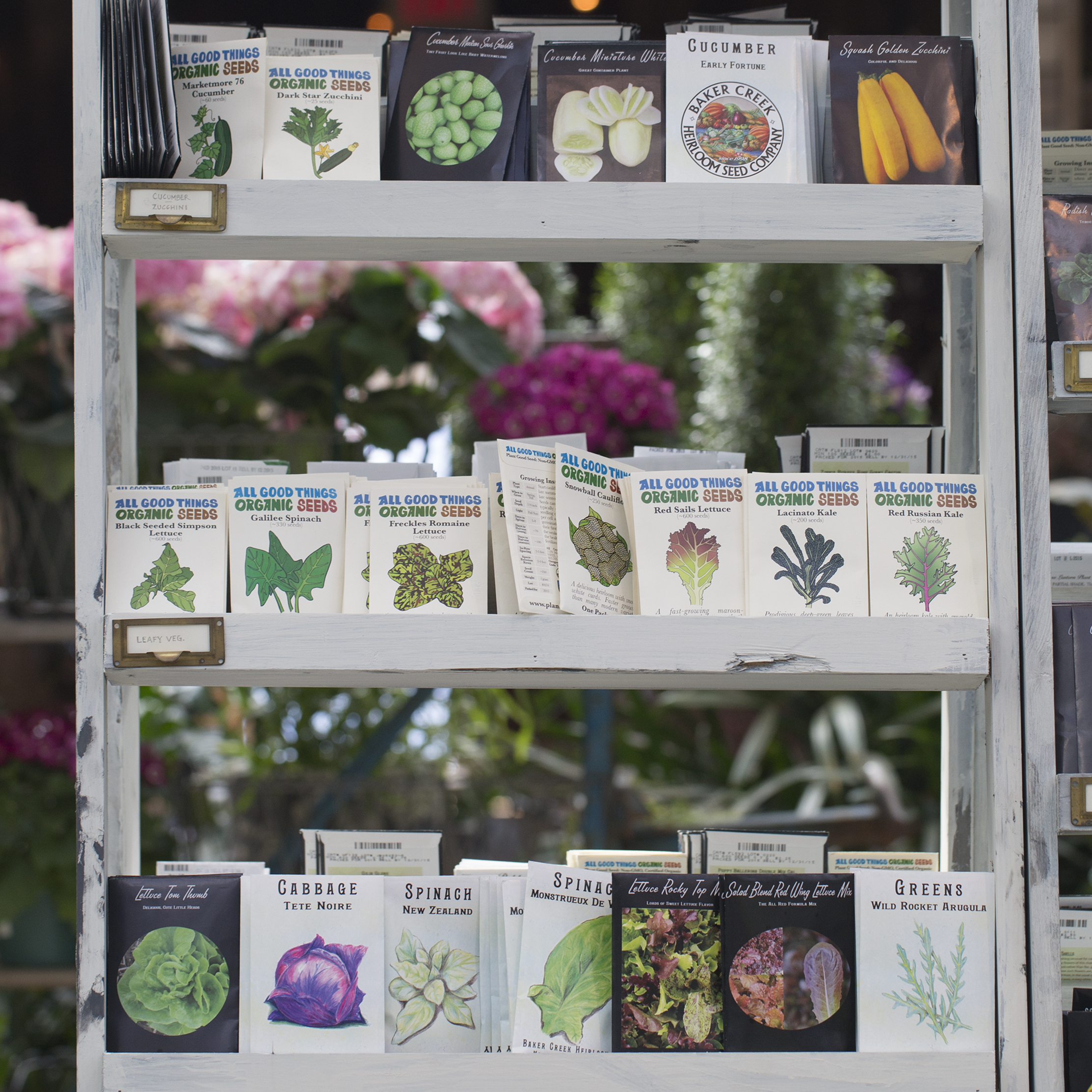 New in the Nursery: Seeds