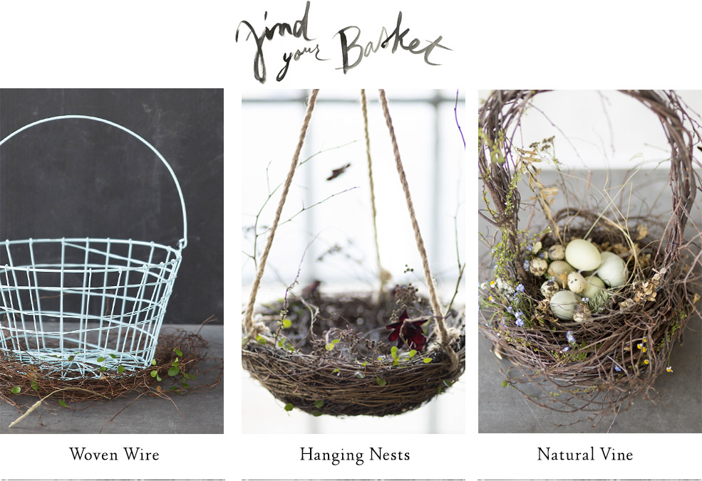 Find Your Basket