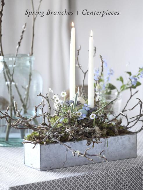 Spring Branches + Centerpieces