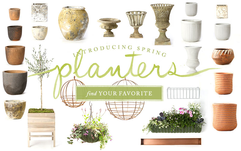 Introducing Spring Planters | Find Your Favorite