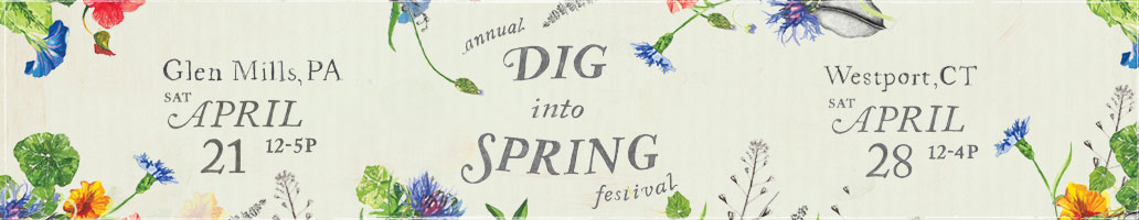 Dig Into Spring