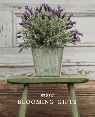 More Blooming Gifts