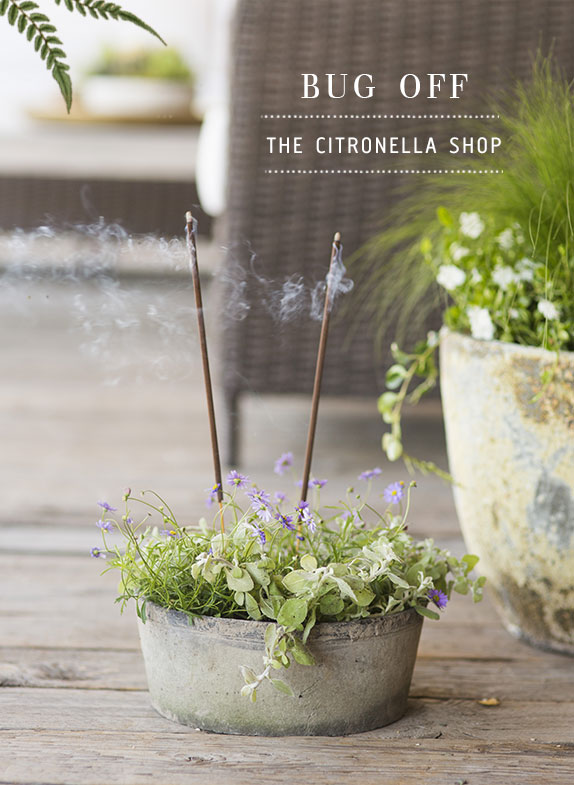 Bug Off | the citronella shop