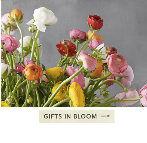 Gifts in Bloom