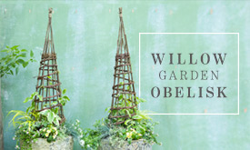 Willow Garden Obelisk
