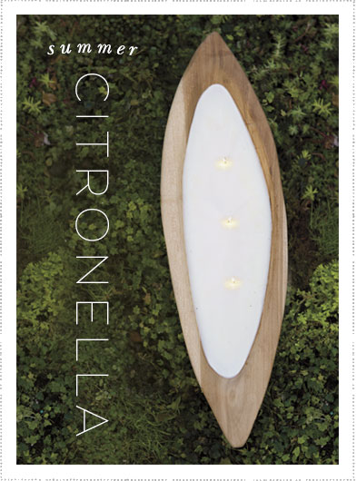 summer citronella