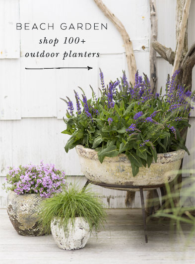 beach garden | shop 100+ outdoor planters