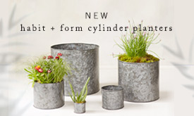 NEW Habit + Form Cylinder Planters