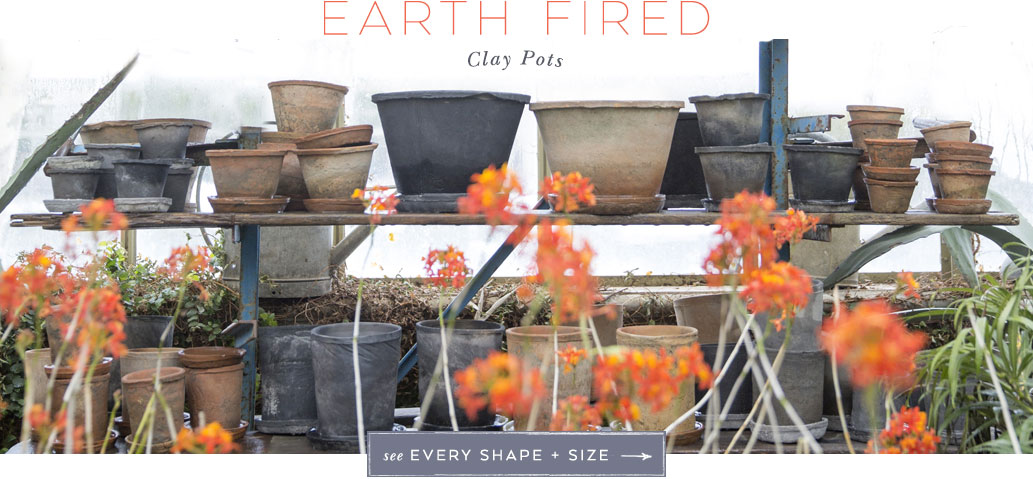 Earth Fired Clay Pots | see every shape + size