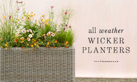 All Weather Wicker Planters