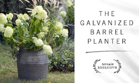 The Galvanized Barrel Planter