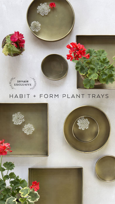 habit and form trays