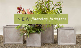 fiberclay outdoor planters