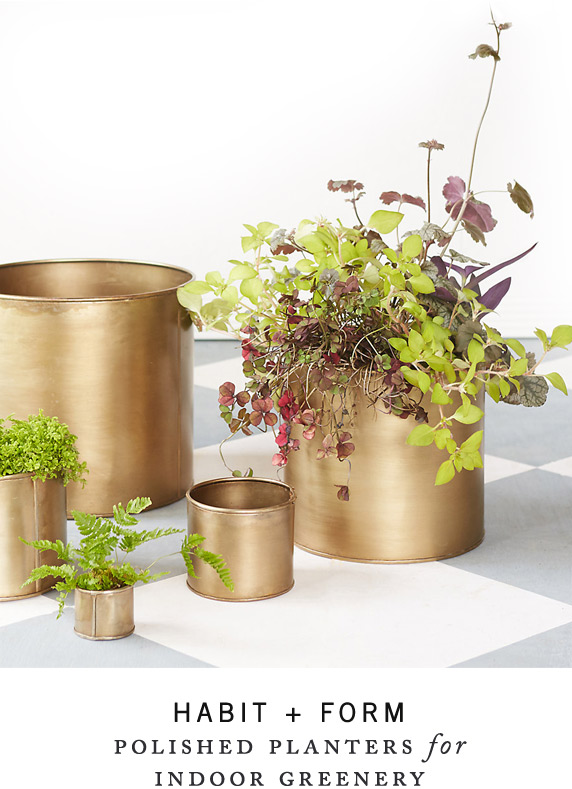 Habit + Form | polished planters + trays for indoor greenery