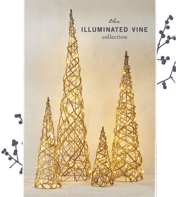 The Illuminated Vine Collection