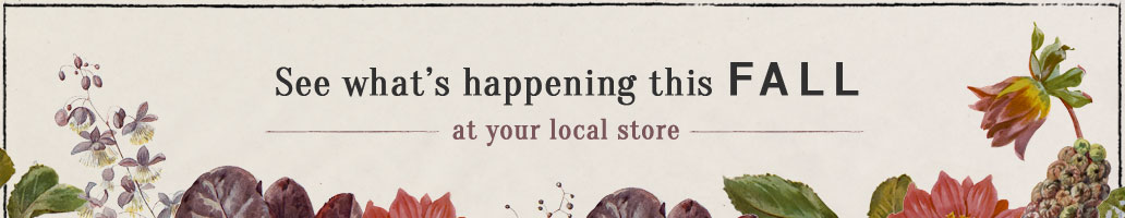 See What's Happening this FALL | at your local store