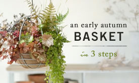An Early Autumn Basket | in 3 steps