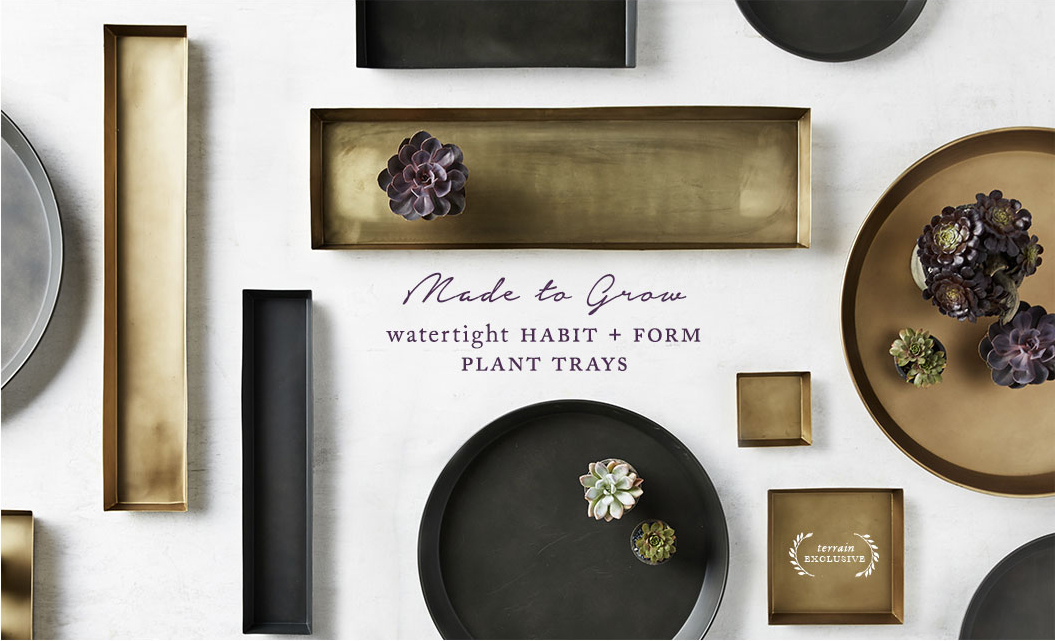 Made to Grow | Watertight Habit + Form plant trays | terrain exclusive badge