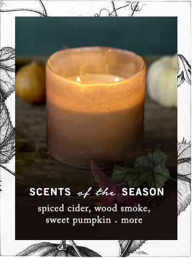 Scents of the Season | Spiced cider, wood smoke, sweet pumpkin + more