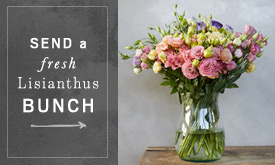 Send A Fresh Lisianthus Bunch