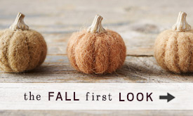The Fall First Look