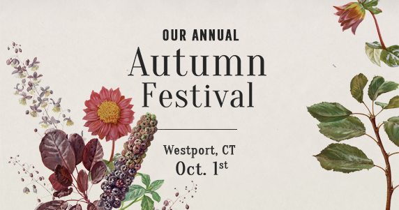 Our annual Autumn Festival | Westport, CT Oct 1st