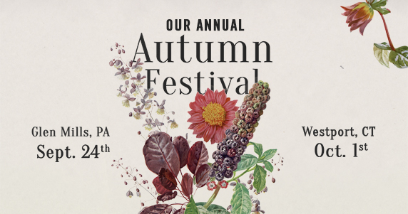 Our annual Autumn Festival | Glen Mills, PA Sept 24th | Westport, CT Oct 1st