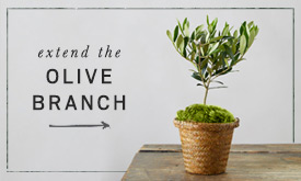 Extend the Olive Branch