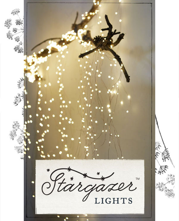 Stargazer Lights