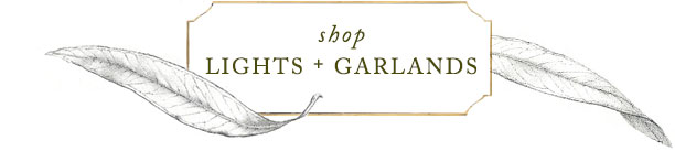 Shop Lights and Garlands