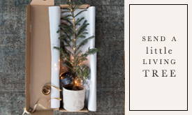 Send a Little Living Tree