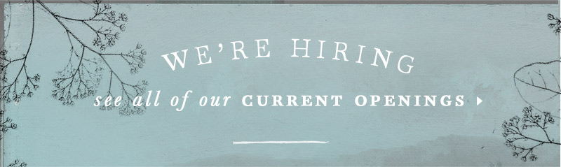 We're Hiring See All of Our Current Openings