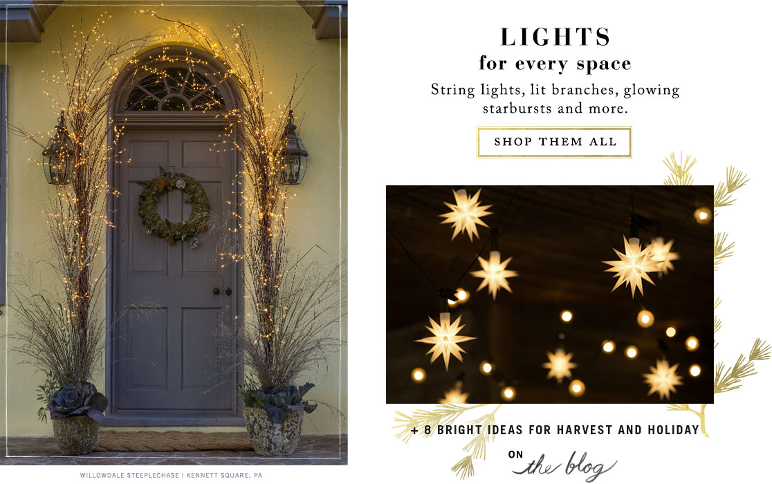 Lights for Every Space
