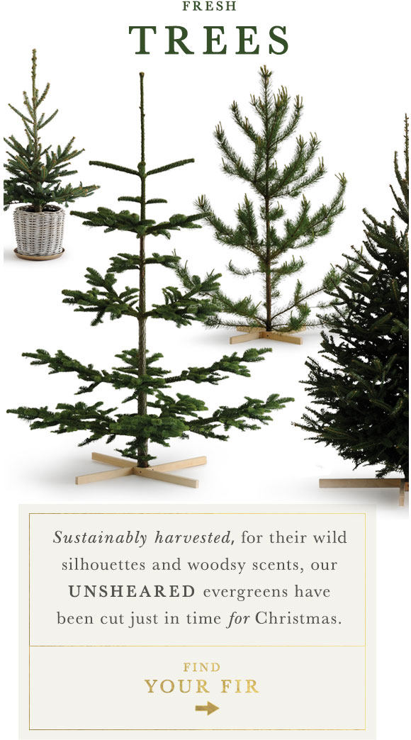 into the woods | shop the faux tree collection