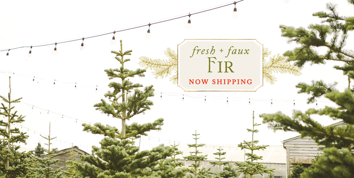 Fresh + Faux Fir | now shipping