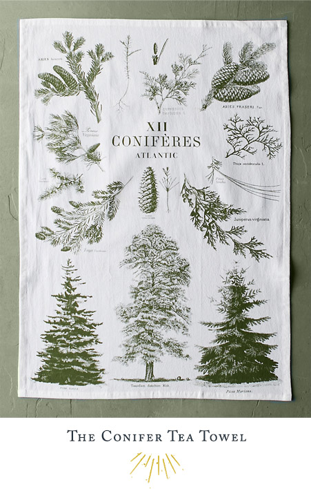 The Conifer Tea Towel